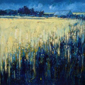 Field of Barley 1